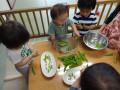 食材に触れる: グリーンピース
